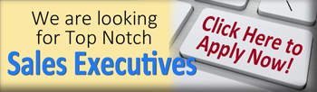 sales executives jobs